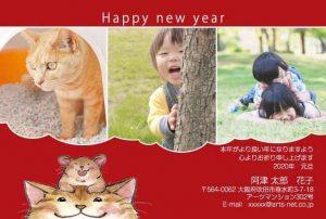 子供の写真と猫の写真が入った年賀状