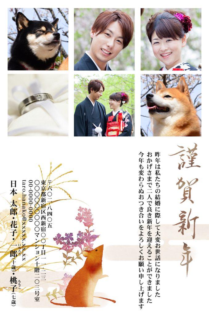新郎新婦や犬の写真が入ったフォーマルデザインの年賀状