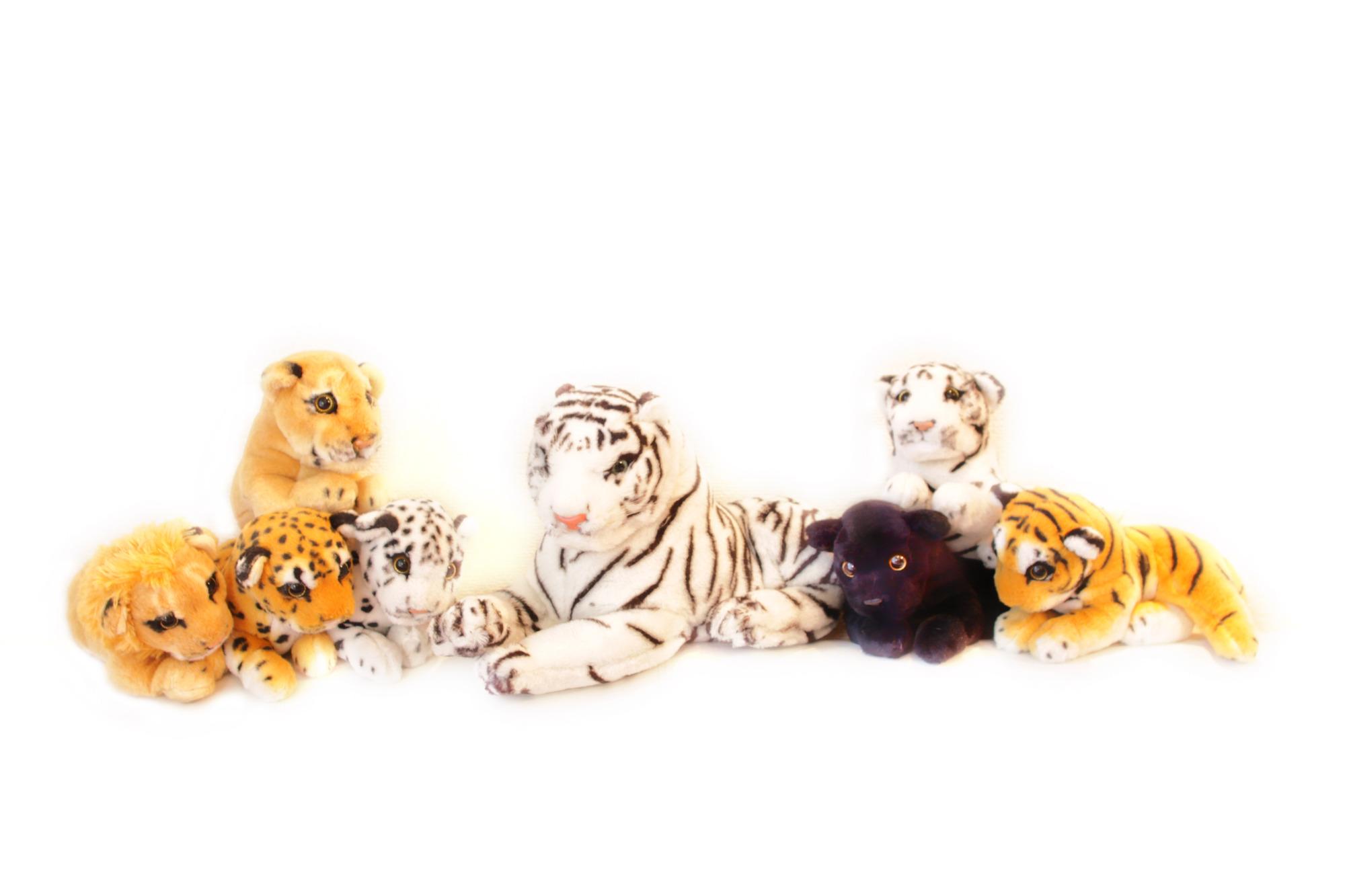 かわいい虎